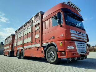 φορτηγό όχημα μεταφοράς ζώων DAF XF 105.510 6x4 Élőállat-szállító + ρυμουλκούμενο όχημα μεταφοράς ζώων