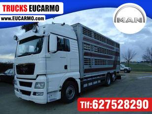 φορτηγό όχημα μεταφοράς ζώων MAN TGX 26 480