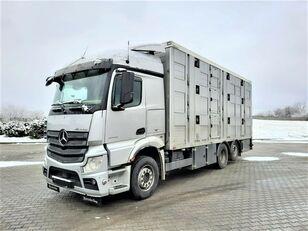 φορτηγό όχημα μεταφοράς ζώων MERCEDES-BENZ Actros 2543 6x2