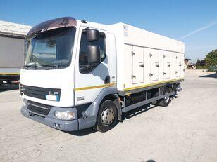 φορτηγό ψυγείο DAF 45.220 SURGELATI ATP 10/2024 - 120QLI
